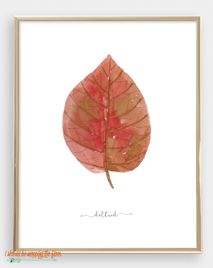 printable fall leaves.png